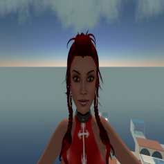 orca-flottapic2