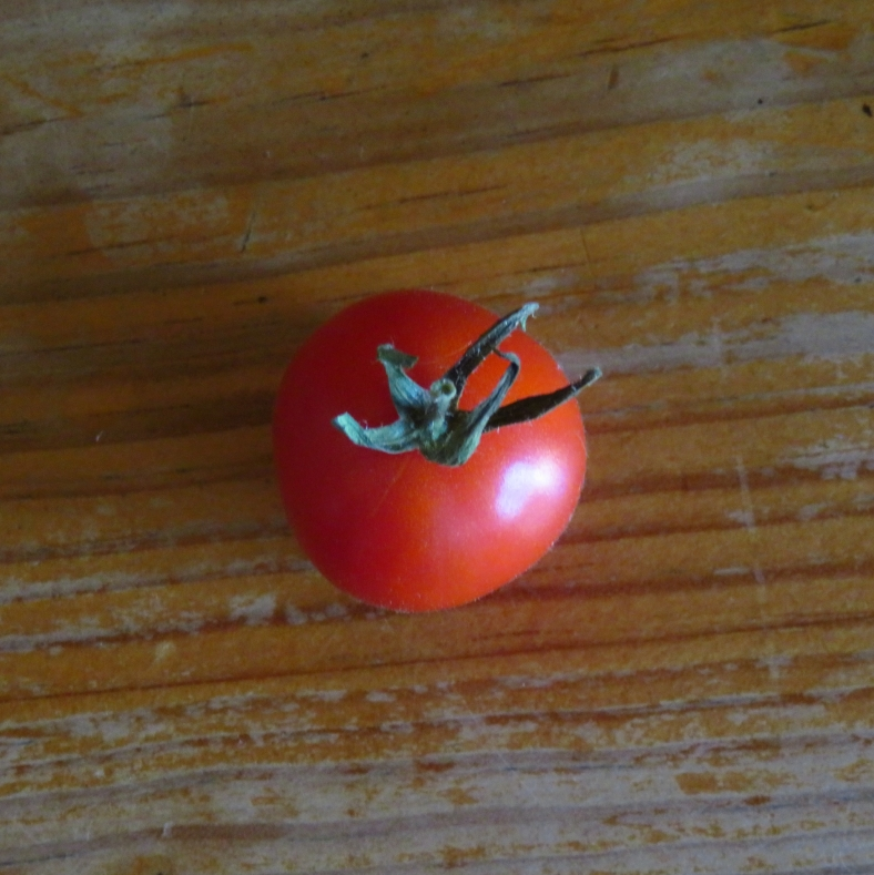 tomate2
