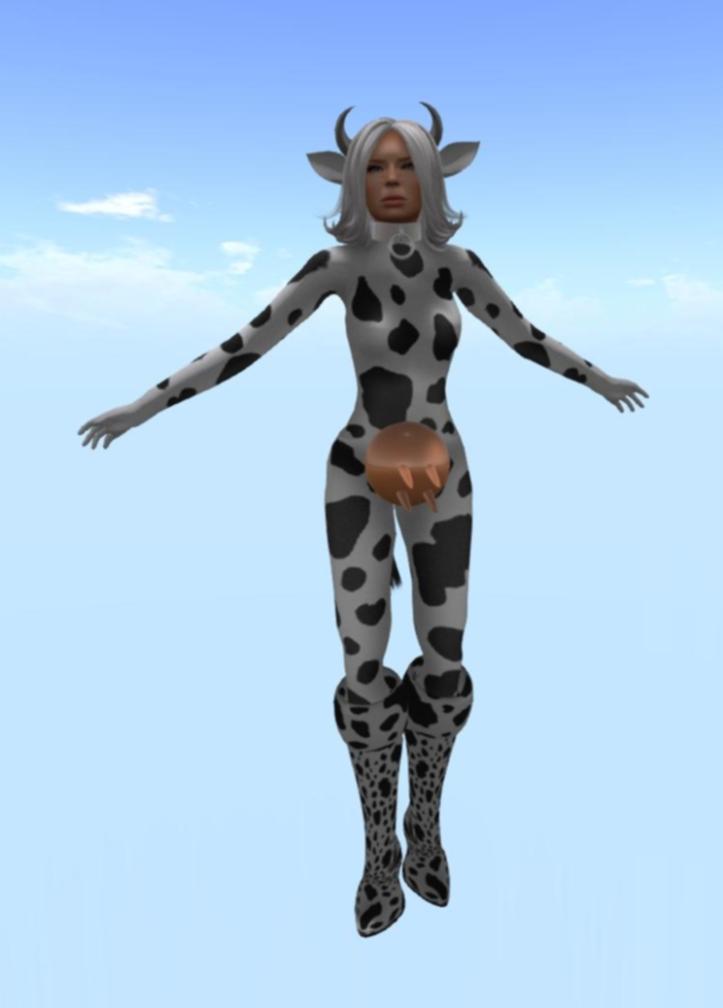 cow_001