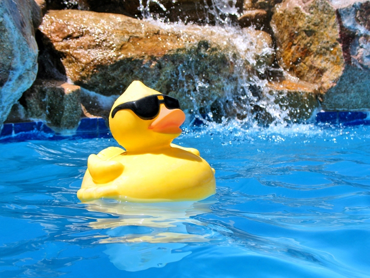 RubberDuckyPoolParty