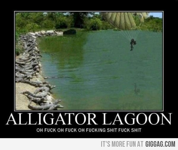 AlligatorLagoon