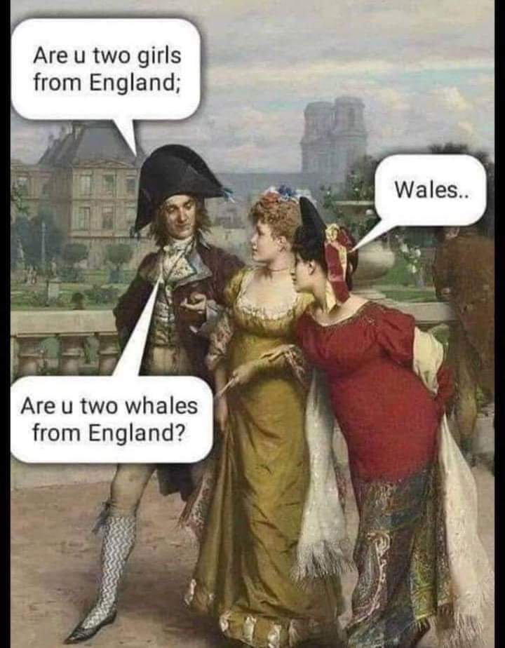 WhalesWales