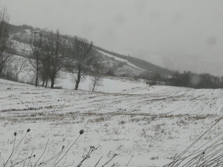 snowitalia