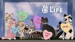 SLcats