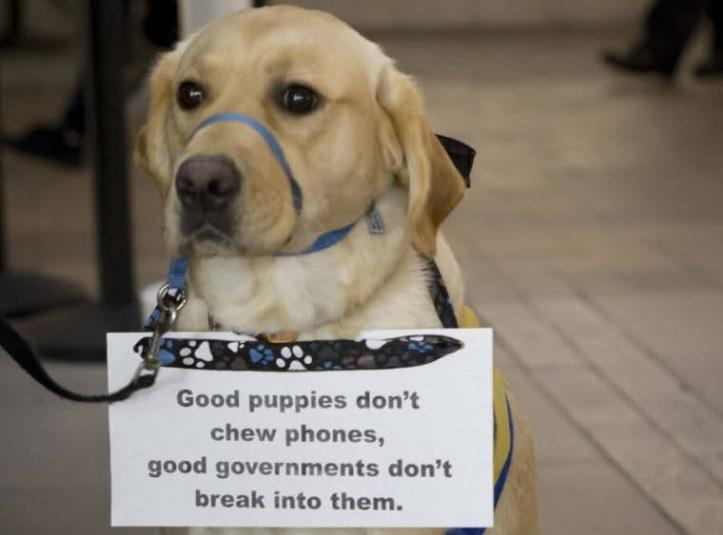 goodpuppy