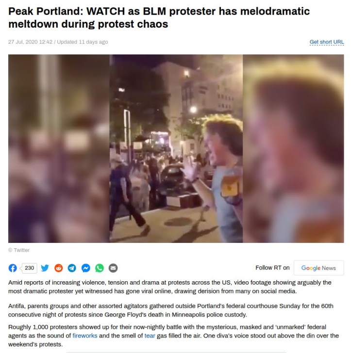 protestermeltdown